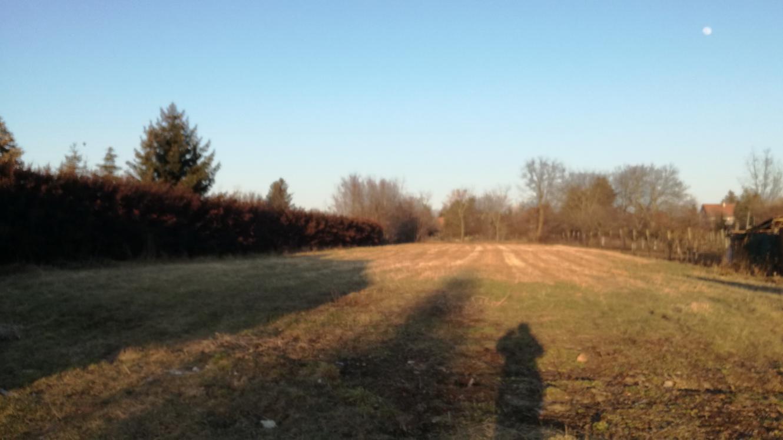 DEVELOPERI POZOR - investičný pozemok - Mojmírovce